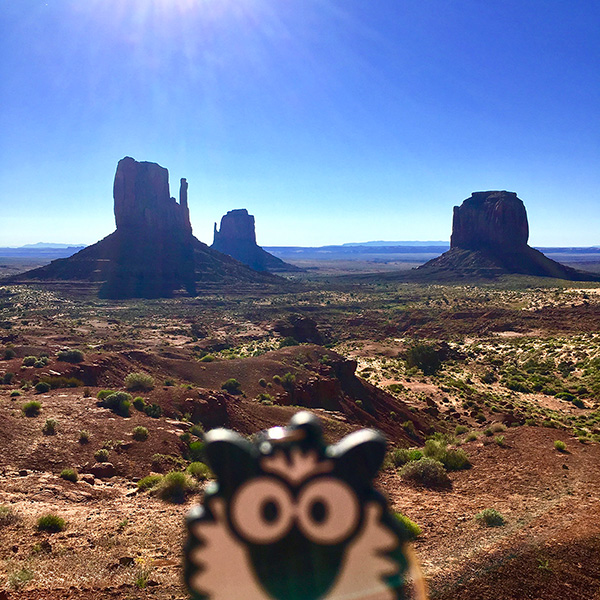 Barney à Monument Valley